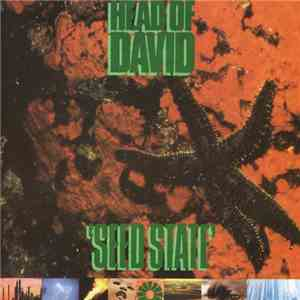 Head Of David - Seed State download album